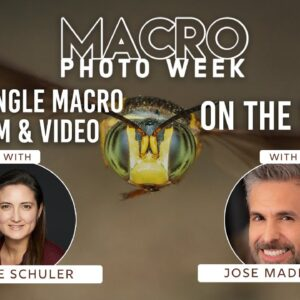 """#BHMacroWeek Day 2: """"A Discussion about Wide-angle Macro in Film & Video"""" & """"Macro On The Wing"""""""